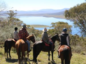 Reynella Homestead and Horseback Rides - Accommodation Resorts