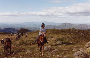 High Country Horses - Accommodation Resorts