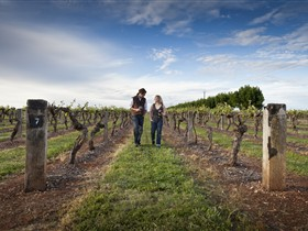 Coonawarra Wineries Walking Trail - Accommodation Resorts