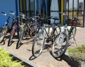 George Town to Low Head Walking and Cycling Trail - Accommodation Resorts
