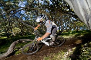 All Terrain Cycles - Accommodation Resorts