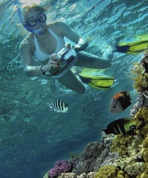 Calypso Reef Charters - Accommodation Resorts