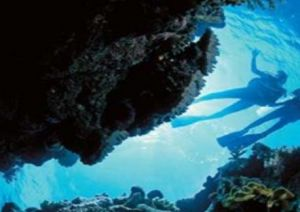 Deep Sea Divers Den - Accommodation Resorts