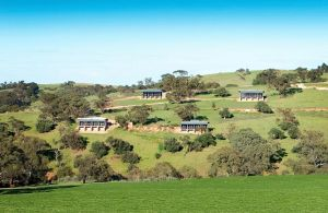 Barossa Pavilions - Accommodation Resorts